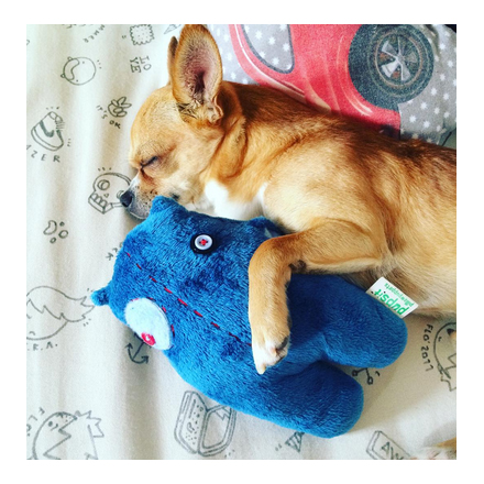 Pups & Circa